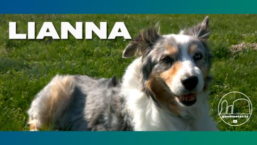 Thumbnail-Lianna