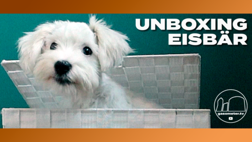 Thumbnail-Unboxing-Eisbär